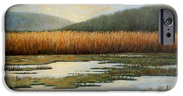 Hudson River Tapestries - Textiles iPhone Cases - Piermonts Marshes iPhone Case by Sue Barrasi