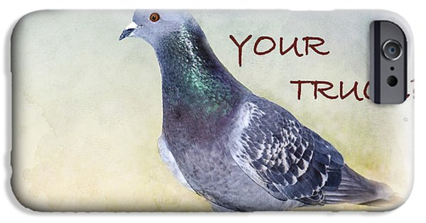 Pigeon iPhone Cases - Pigeon Humor #1 iPhone Case by Betty LaRue