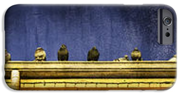 Ledge iPhone Cases - Pigeons on yellow roof iPhone Case by Peter v Quenter