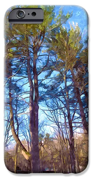Green Day Paintings iPhone Cases - Pine  against the blue sky iPhone Case by Lanjee Chee