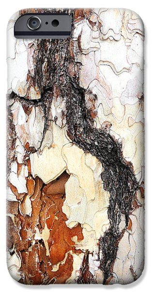 Animals Photographs iPhone Cases - Pine bark close-up iPhone Case by Guido Strambio