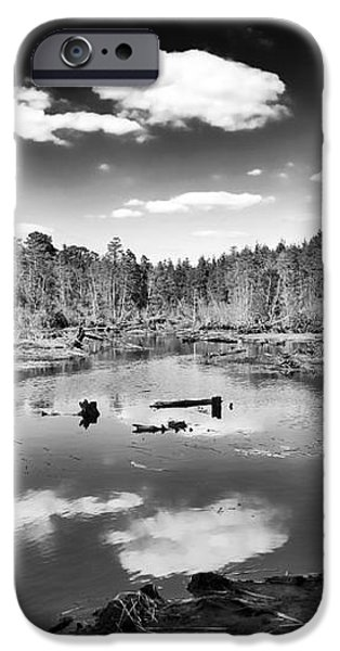 Pine Barrens Lake iPhone Case by John Rizzuto