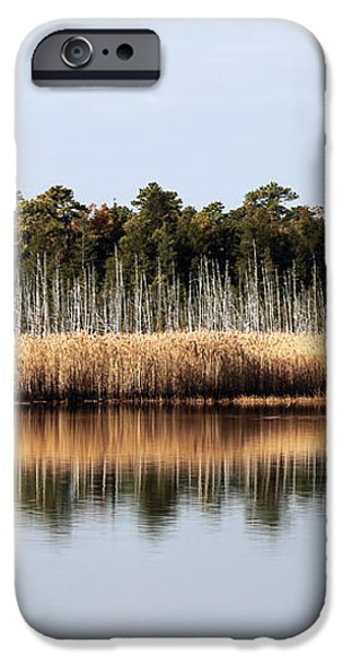 Pine Barrens Reflections iPhone Case by John Rizzuto