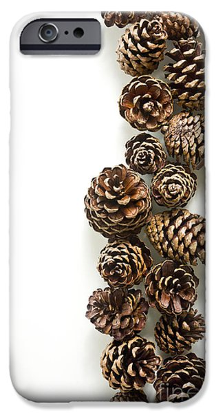 Pine Cones iPhone Case by Edward Fielding