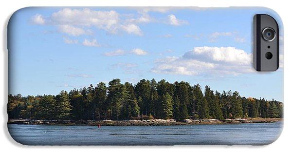 Maine Pyrography iPhone Cases - Pine Island iPhone Case by Susan Russo