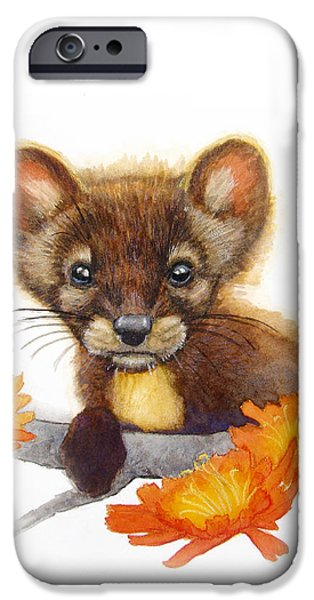 Catherine White Paintings iPhone Cases - Pine Marten iPhone Case by Catherine Noel