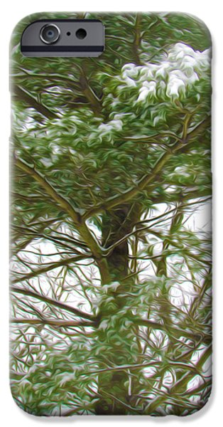 Twiggy Paintings iPhone Cases - Pine tree covered with snow 1 iPhone Case by Lanjee Chee