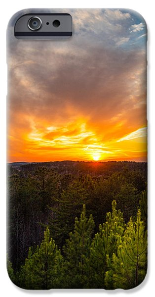 Trees At Sunset iPhone Cases - Pine Trees At Sunset iPhone Case by Parker Cunningham