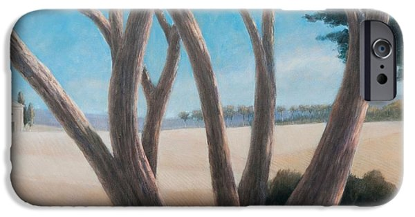 Pines Photographs iPhone Cases - Pines Near Pienza, 2012 Acrylic On Canvas iPhone Case by Lincoln Seligman