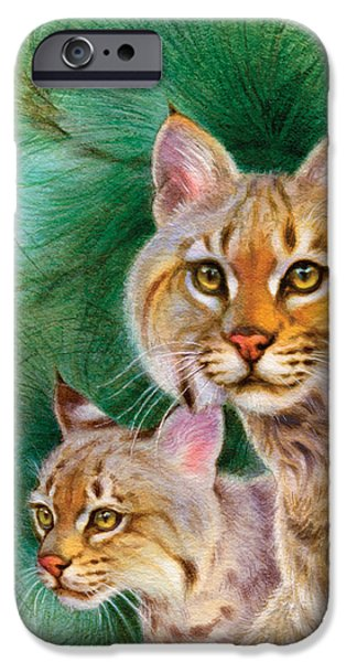 Pinewoods Bobcat iPhone Case by Tracy Herrmann