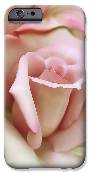 Soft Photographs iPhone Cases - Pink and Ivory Rose Portrait iPhone Case by Jennie Marie Schell