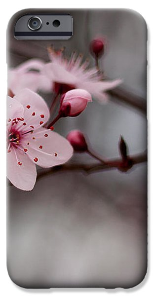 Pink Blossoms iPhone Case by Michelle Wrighton