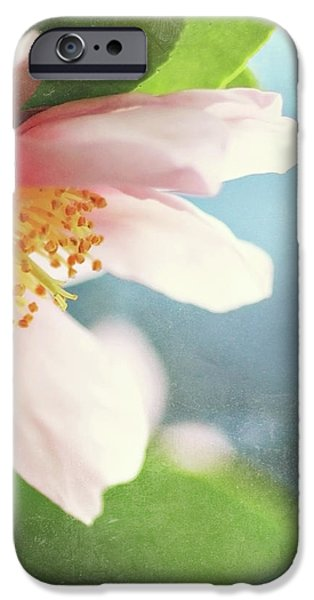 Pink Camellia iPhone Case by Sylvia Cook