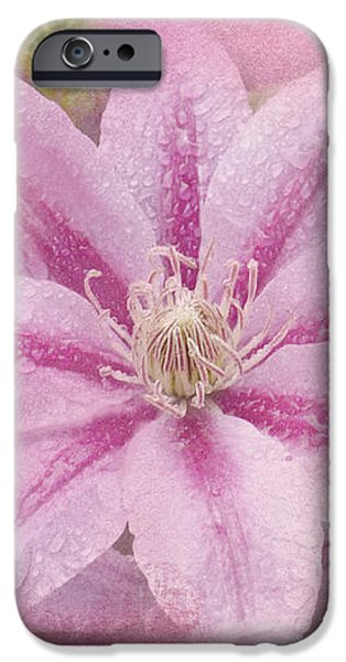 Pink Clematis Profusion iPhone Case by Betty LaRue