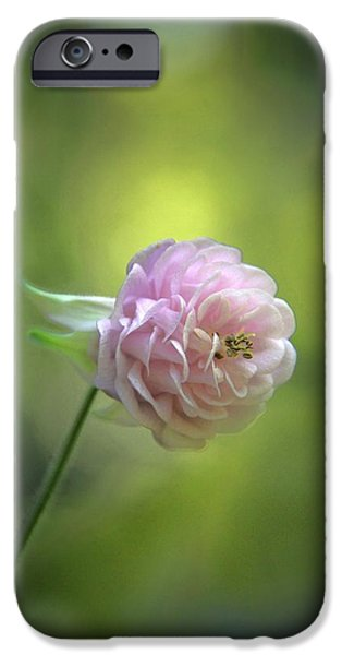 Andrea Lazar iPhone Cases - Pink Columbine iPhone Case by  Andrea Lazar