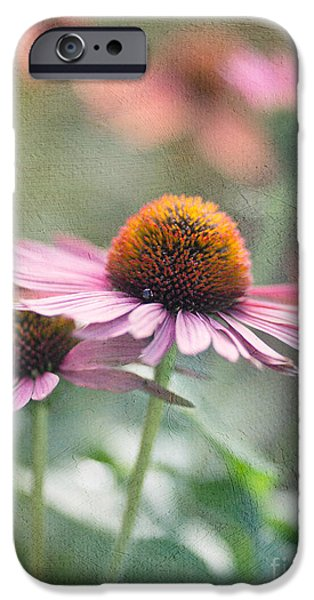 Cone Flower iPhone Cases - Pink Cone iPhone Case by Rebecca Cozart