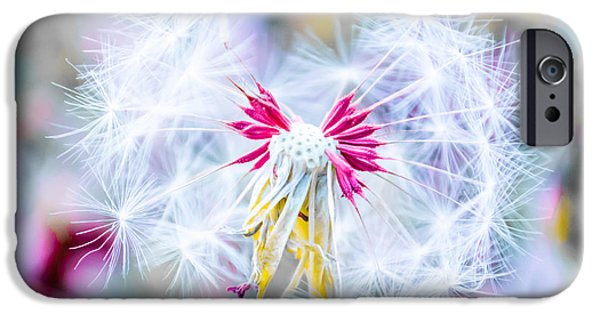 Selective Coloring Art iPhone Cases - Magic in Pink iPhone Case by Parker Cunningham
