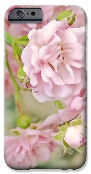 Pink Fairy Roses iPhone Case by Jennie Marie Schell