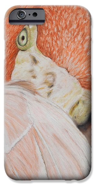 Fauna Pastels iPhone Cases - Pink Flamingo 2 iPhone Case by Jeanne Fischer
