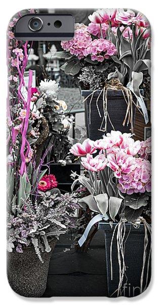 Flower Design Photographs iPhone Cases - Pink flower arrangements iPhone Case by Elena Elisseeva