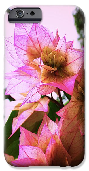 Metal Prints Pyrography iPhone Cases - Pink flower iPhone Case by Girish J