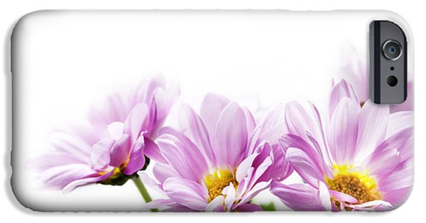 Samples iPhone Cases - Pink flowers iPhone Case by Jelena Jovanovic
