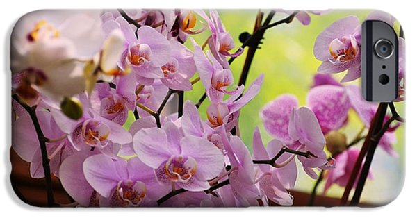 Pink Tapestries - Textiles iPhone Cases - Pink flowers iPhone Case by Ruth Yvonne Ash