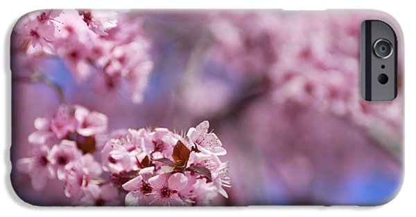 Cherry Blossoms iPhone Cases - Pink iPhone Case by Guido Montanes Castillo