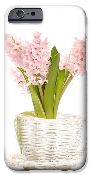 Wicker iPhone Cases - Pink Hyacinths iPhone Case by Amanda And Christopher Elwell