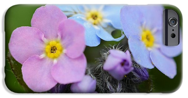 Small iPhone Cases - Pink Lavender and Blue iPhone Case by Minartesia
