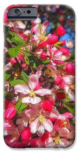 Pink Magnolia 2 iPhone Case by Joann Vitali
