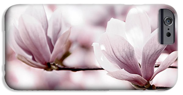 Magnolia iPhone Cases - Pink Magnolia iPhone Case by Elena Elisseeva