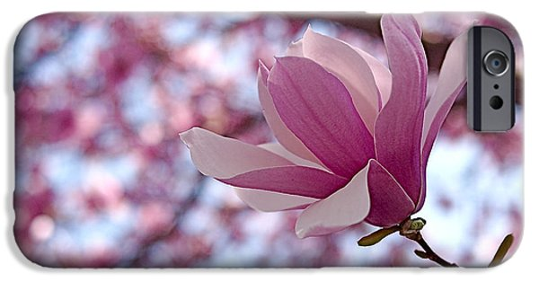 Magnolia iPhone Cases - Pink Magnolia iPhone Case by Rona Black