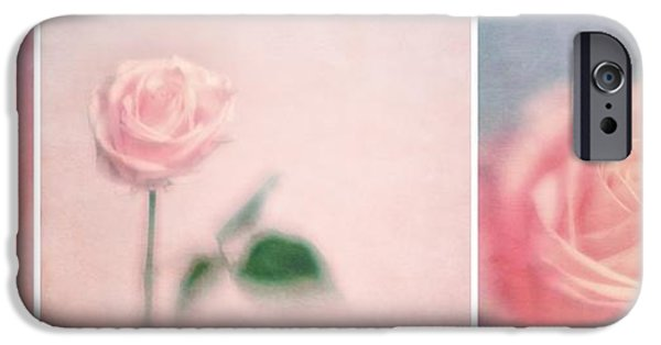 Flora iPhone Cases - Pink Moments iPhone Case by Priska Wettstein