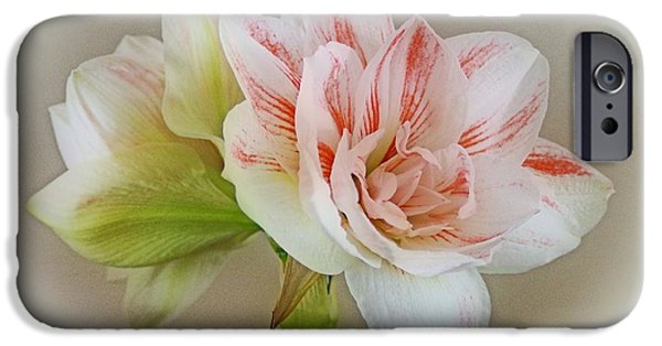 Indiana Flowers iPhone Cases - Pink Nymph iPhone Case by Sandy Keeton