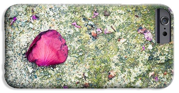 Asphalt iPhone Cases - Pink petal iPhone Case by Silvia Ganora