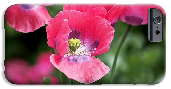 Flora iPhone Cases - Pink Poppies iPhone Case by Rona Black