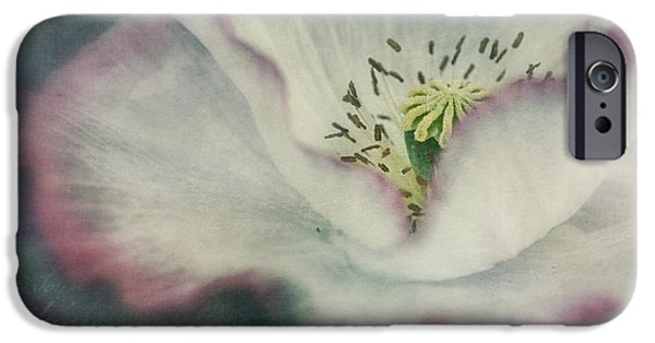 Flora Photographs iPhone Cases - Pink Rimmed Beauty iPhone Case by Priska Wettstein