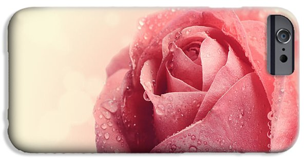Fresh Pyrography iPhone Cases - Pink Rose iPhone Case by Jelena Jovanovic