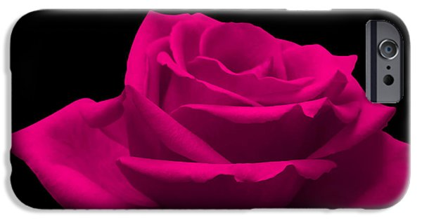 Flora Photographs iPhone Cases - Pink Rose iPhone Case by Wim Lanclus