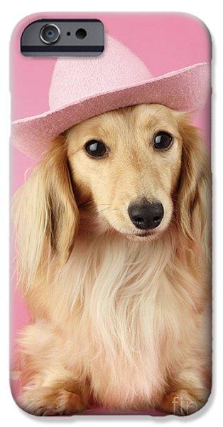 Dachshund Digital Art iPhone Cases - Pink Times iPhone Case by Greg Cuddiford