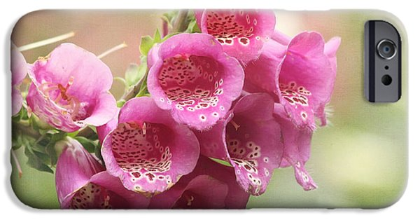 Foxglove Flowers Photographs iPhone Cases - Pink Trumpet iPhone Case by Kim Hojnacki