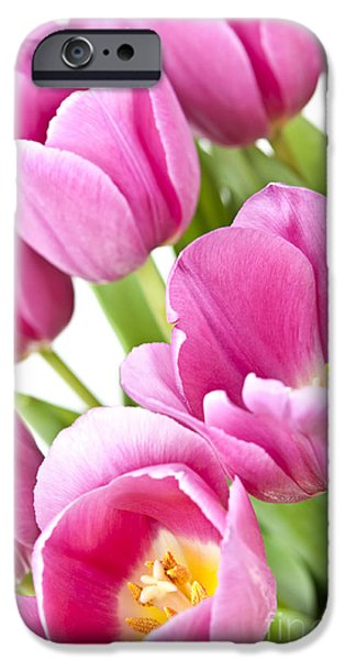 Flora iPhone Cases - Pink tulips iPhone Case by Elena Elisseeva