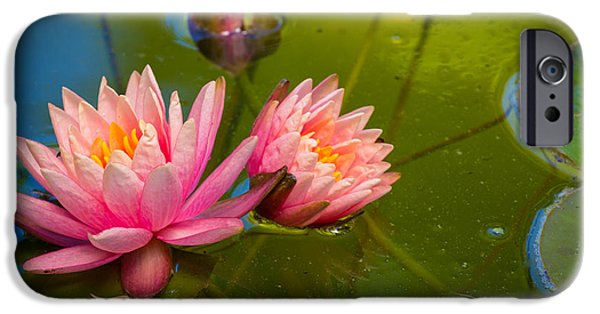 Flora Photographs iPhone Cases - Pink Water Lily iPhone Case by Inge Johnsson