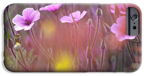 Koehrer-wagner_heiko iPhone Cases - Pink wild Geranium iPhone Case by Heiko Koehrer-Wagner