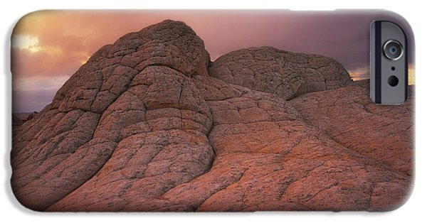 Pinky iPhone Cases - Pinky and the Brain iPhone Case by Peter Coskun