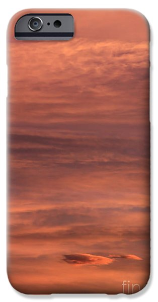 Pinky iPhone Cases - Pinky iPhone Case by Jon Burch Photography