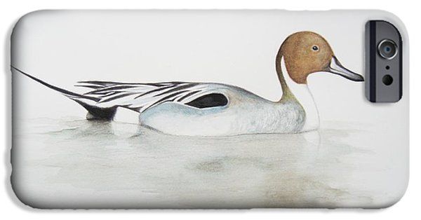 Birds iPhone Cases - Pintail Duck iPhone Case by Ele Grafton