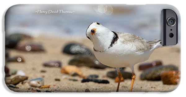 Minimalism iPhone Cases - Piping Plover Quote iPhone Case by Bill  Wakeley