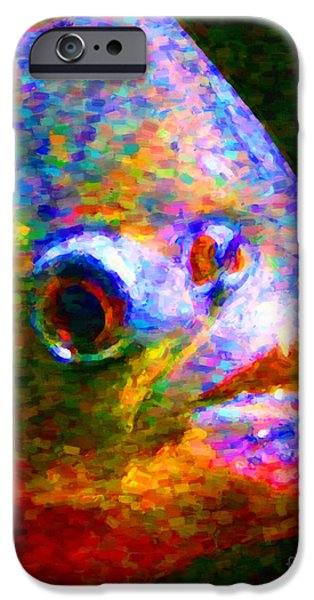 Piranha iPhone Cases - Piranha iPhone Case by Wingsdomain Art and Photography